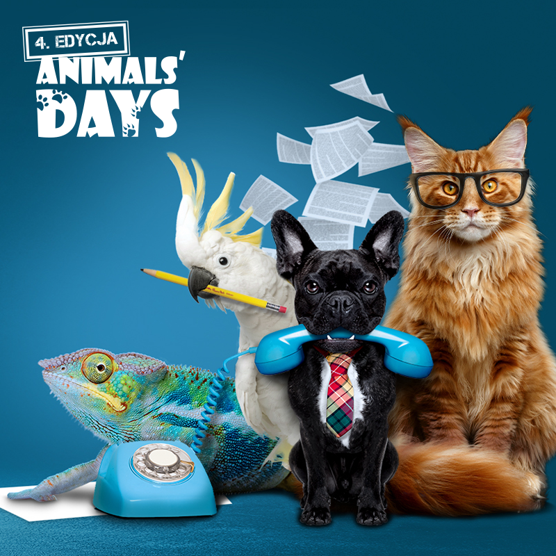 Animals Days